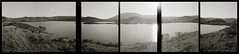 Nicasio Reservoir (efo) Tags: california bw landscape nicasio multiframe sextych penorama