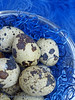 Quail Eggs on Blue (Of Spring and Summer) Tags: blue stilllife food inspiration art home nature thread vintage reflections easter photography design interior creative feathers bowl retro eggs eastereggs quaileggs ofspringandsummer