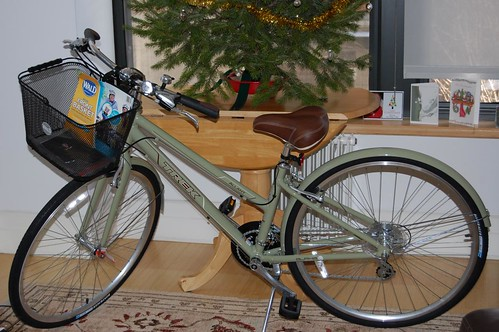Stolen Green Trek Bicycle Venice Beach