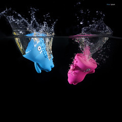 81 of 365 (Morphicx) Tags: blue water toy droplets dolls vinyl experiment fishtank canon5d 365 uglydoll uglydolls canon100mmmacro flickrcolors wedgehead strobist canon580exii cactusv4 morphicx 365shotsin365days