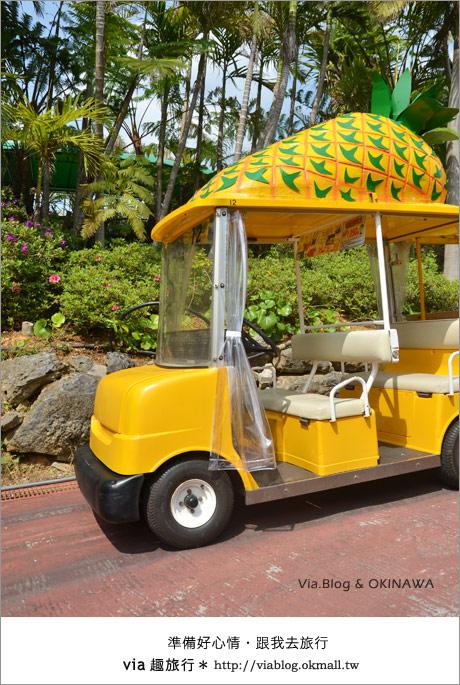 【via的沖繩旅誌】名護鳳梨公園~可愛又香甜的鳳梨樂園!8