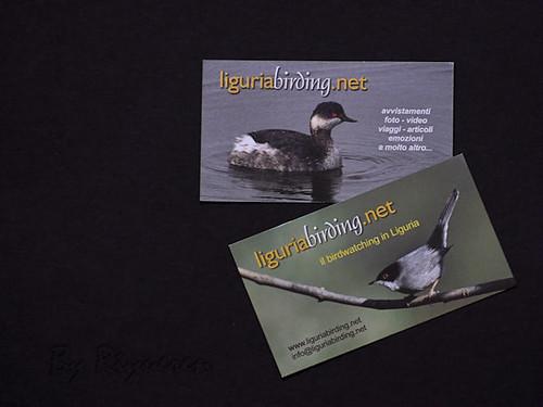 Liguria Birding
