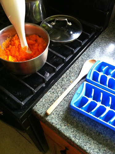 making baby food: organic carrots and organic apples
