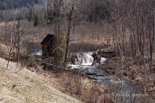 Beaver Pond 5 (34 of 45).jpg