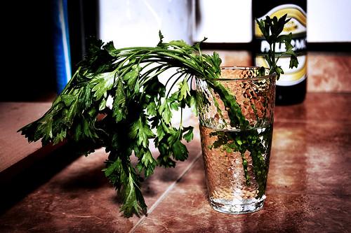 Perejil en un vaso de agua