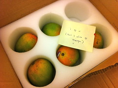 birthday gift finally here! (Premshree Pillai) Tags: birthday nyc food love yum postit note gift mangoes