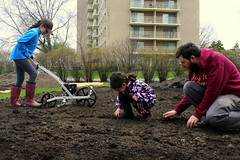 The Gan Project intergenerationally planting corn at 3003 W Touhy, Our Homestead (*Zoup*) Tags: corn soil homestead jcc urbanfarm westrogerspark theganproject plantingkernels kedzieandtouhy
