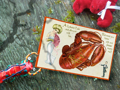 Sweet Lobster Love (dannysoar) Tags: love sex valentine lobster mating matingrituals mysteriesofthedeep dcmt53 scanofafilmprint