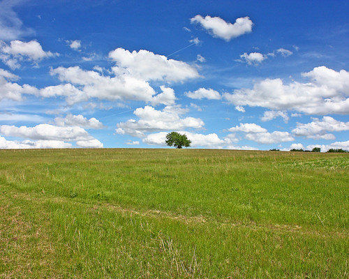 Hillbilly Hill