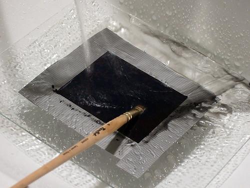 FujiNegative-WashtheBack