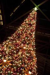 Christmas Tree, World Bazaar, Tokyo Disneyland