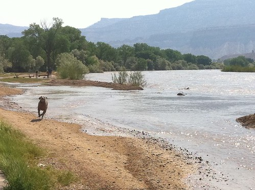 CO river flood