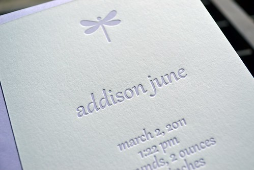 Addison announcement_e (2)