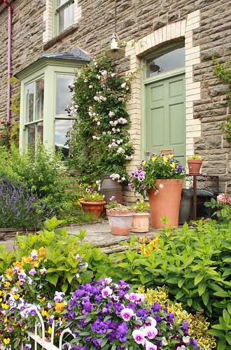 Flowers & green door, Hay-on-Wye