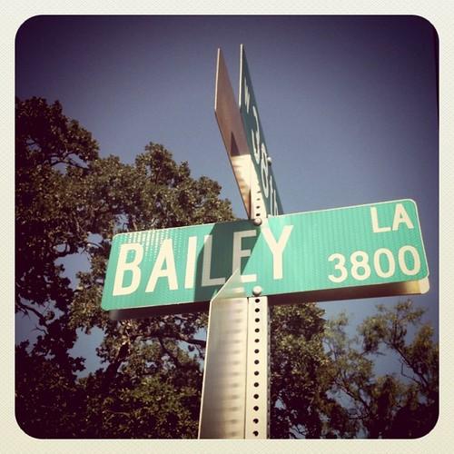 Baileylane