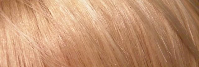 blondi2