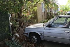 1984 Renault Alliance (vetaturfumare - thanks for 2 MILLION views!!!) Tags: renault r9 9 alliance dl amc wisconsin ny silver rust junk skrot skrotbil clunker weeds