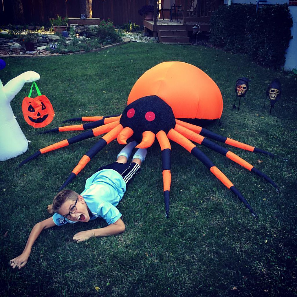 Spiders can't hurt you they said...