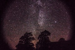 starry night (Loore-Ly) Tags: sky starry stars milyway milkyway nightysky galaxy night naturephoto nature planets treesiluets trees siluets shadows