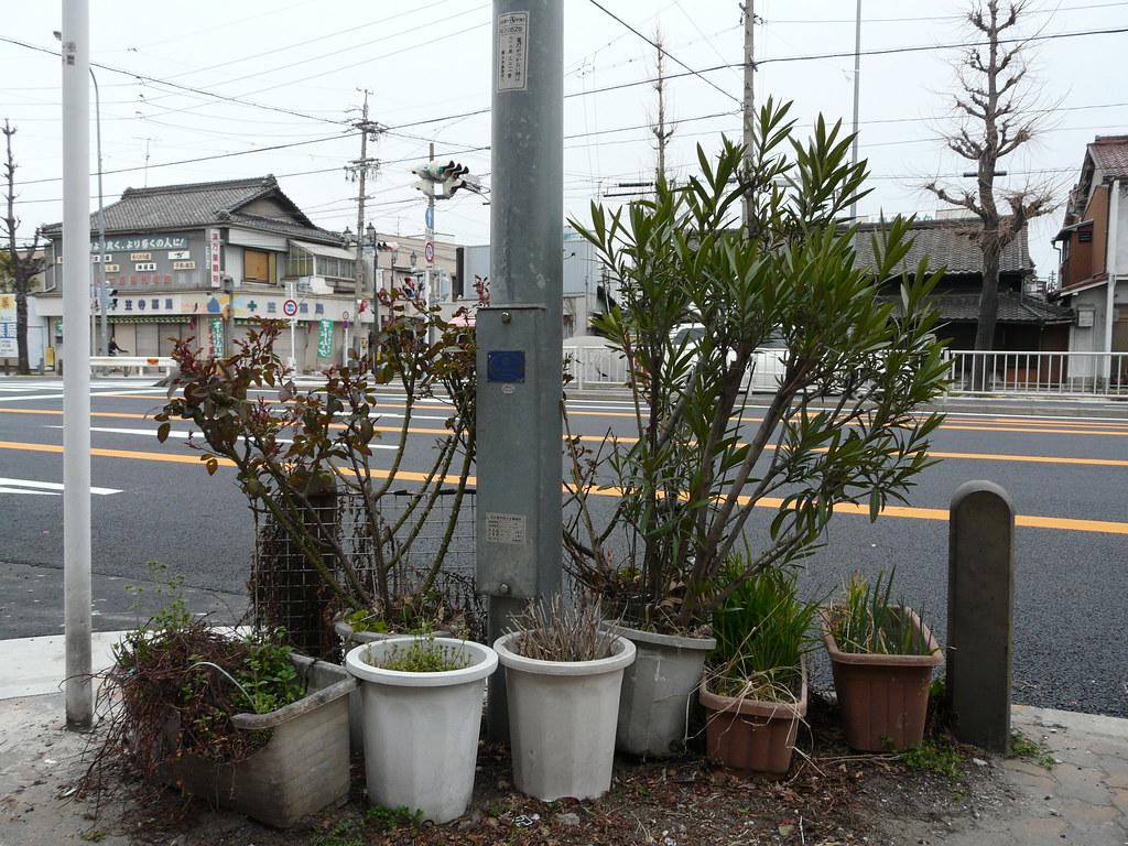 Conjunctive Gardening