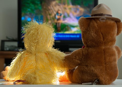 Down Time (Floater Ya-Ya (Jean McKenna)) Tags: bear toys duck yellowflower stuffedanimals holdinghands chickie sugarbear downtime watchingamovie oneobject365days