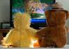 Down Time (Floater Ya-Ya (Jean McKenna)) Tags: bear toys duck yellowflower stuffedanimals holdinghands chickie sugarbear downtime watchingamovie oneobject365days