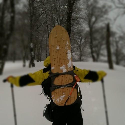 今日の金さんは竹の雪板!