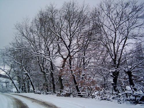 kış desenleri...