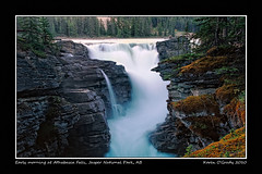 Early morning at Athabasca Falls, Jasper National Park, Alberta (kgogrady) Tags: park morning trees summer canada west color colour tree water rock landscape rockies nikon jasper rocky noone ab nopeople canadian falls national alberta western rockymountains jaspernationalpark athabascafalls athabasca d300 flowingwater