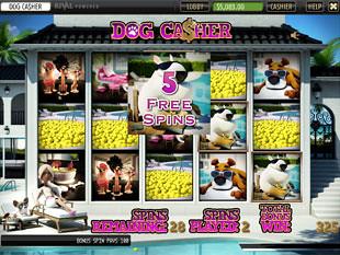 free Dog Casher slot bonus feature 1