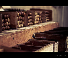"""""""Sometimes a cigar is just a cigar."""" ~Sigmund Freud (RiaPereira - here but mostly there) Tags: canon dof b"""