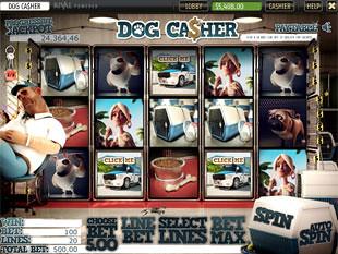 free Dog Casher slot bonus feature 2
