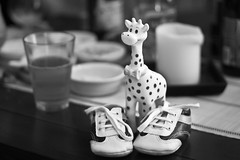 Meeting the new baby of a Friend (ilovethelight!) Tags: blackandwhite baby black france glass contrast canon 350d 50mm brittany shoes noiretblanc bokeh bretagne bebe canoneos350d chaussures verre girafe 2011 project365 365project meetingfriends projet365 1pictureaday canonfrance 365community 1photoparjour 2011enphoto 2011enphotos 1photo1jour 1picturesaday glassbetweenfriends