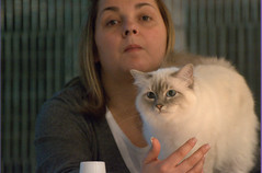 DSC_0345 (Francesco_Fontana) Tags: cat kat chat gato katze mace  macska gatto  kot gat koka kedi kass  katt kissa kttur maka kucing pusa    kat  kais    pisic  qattus conmo