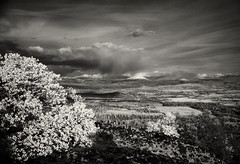 Mt McGloughlin from Upper Table Rock (david.bardes) Tags: camera city white rock oregon century river table ir upper valley infrared 6x9 rogue press mesa medford graflex efke southen ir820