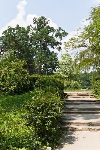 Park Alexandria landscape