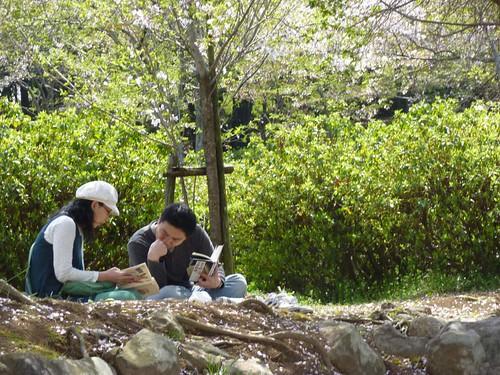 岳の木場公園3