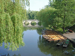 Bellerbys Summer excursions - River Cam, Cambridge (Bellerbys College website) Tags: uklandmarks bellerbyssummer uktouristhotspots