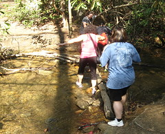 Tricky creek crossing Photo
