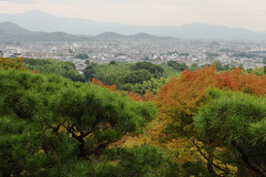First Signs of Fall (Qiche) Tags: travel autumn trees red fall leaves japan garden asian japanese kyoto asia view foliage arashiyama stroll okochisanso