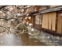 IV: Winter Capitals