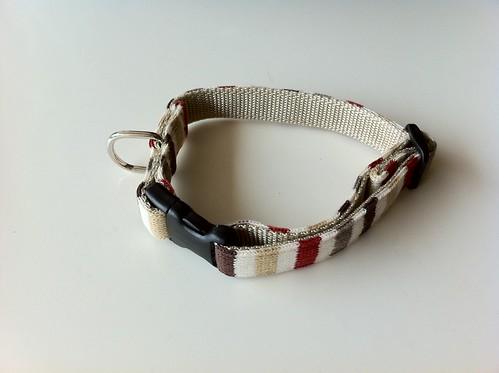 りんちゃんの新しい首輪