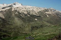 kurdistan (Kurdistan Photo ) Tags: love nature landscape photo iran iraq collection loves kurdistan barzani naturesfinest blueribbonwinner kurden photo  kurdiskaa kuristani kurdistan4all peshmargaorpeshmergekurdistan kurdistan2all krdistan kurdistan4all flickrestrellas kurdene kurdistan2008 sefti kurdistan2006 flickraward