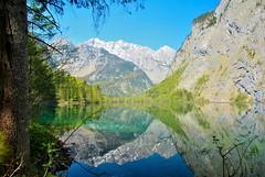 (stacheltierchen) Tags: mountain lake alps reflection bayern bavaria see nikon alpen spiegelung reflektion alpin wanderung gebirge obersee knigssee d3000 betterthangood nikonflickaward flickaward flickaward5 flick5award flickfavourits