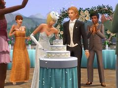 Generations Cake Cutting