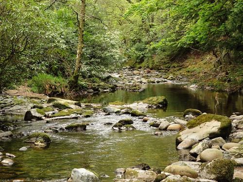 Tranquil River Shimna