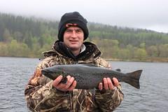 6lb Ferox Trout (salmoferox) Tags: scotland fishing loch trolling 6lb feroxtrout