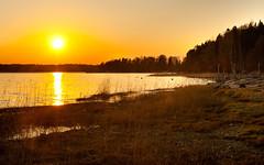 Munkkiniemi sunset (JarkkoS) Tags: sunset wallpaper sky sun beach water yellow finland spring helsinki 1920x1200 munkkiniemi 50mmf14g d700