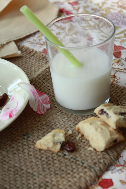 Cranberry Brown Rice Cookie & Milk