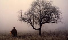 LUZ PARA INVENTAR CAMINOS EN LA OSCURIDAD.... (marthinotf) Tags: luz caminos nocturna niebla composición reveladoforzado fotocreativa olétusfotos